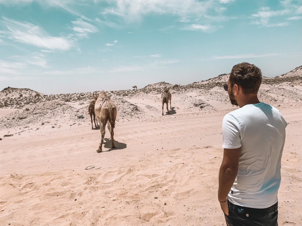 La dune blanche